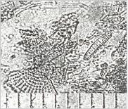 珪藻土(1目盛り10μ)